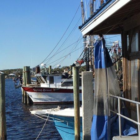 Атлантик-Бич, Флорида: photo0.jpg