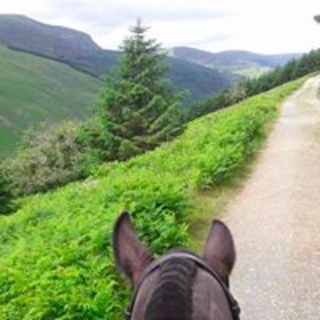 Glenealy, أيرلندا: Glenmalure, a truly amazing scenery. 