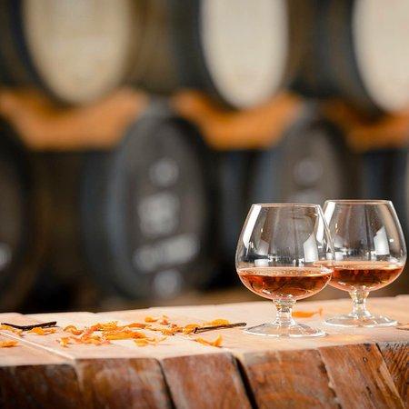 Лухан-де-Куйо, Аргентина: Un recorrido por el increible mundo de los destilados en Casa Tapaus
