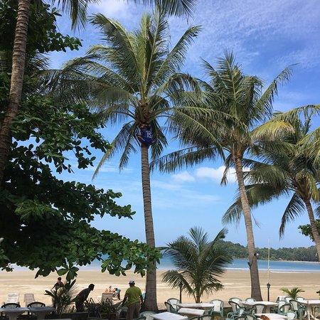 Noble House Beach Resort : photo0.jpg