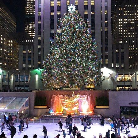 rockefeller center christmas tree new york city recenze. Black Bedroom Furniture Sets. Home Design Ideas