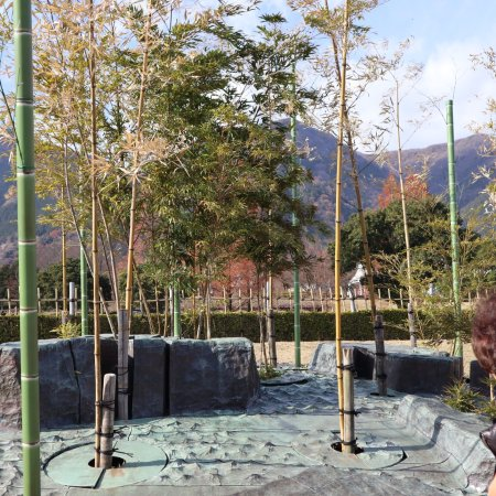 The Site of Reversible Destiny Yoro Park : photo8.jpg