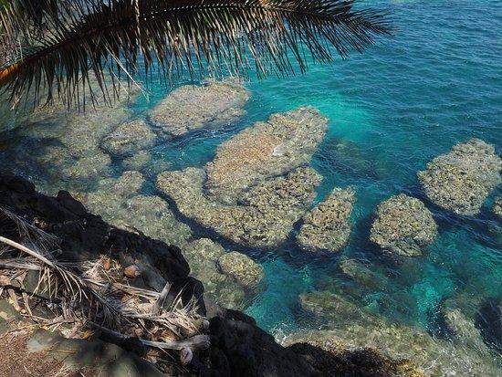 Teahupoo Tahiti Surfari - Day Tours: Une belle vue depuis le chemin côtier