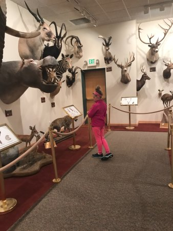 Rock Springs, WY: So much to see and learn
