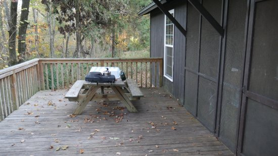 Bristol, FL: Table on back porch and view of the screened in area