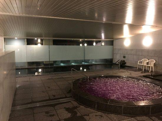 Rusutsu-mura, Japan: 浴場 男