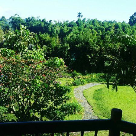Matisses Hotel Campestre: IMG_20170624_082807_806_large.jpg