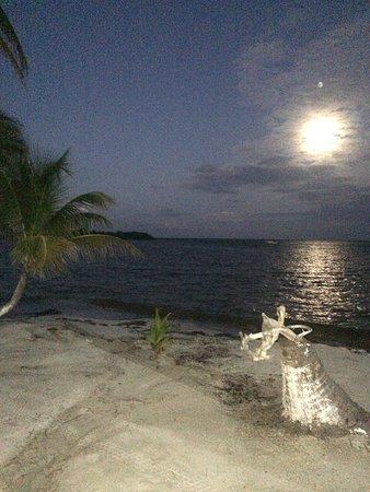 Foto de Turneffe Island