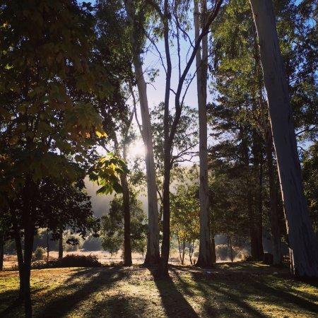 Bright, ออสเตรเลีย: Campgrounds