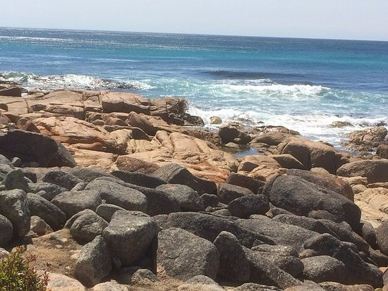 Coles Bay, Avustralya: Rocky Section Of The Beach