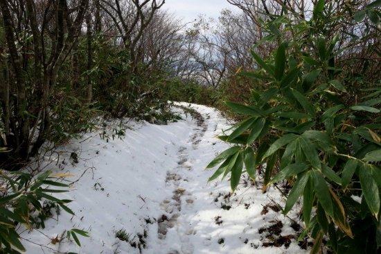 Fukushima Prefecture, Japan: スキー場を抜けると登山道に雪が・・・