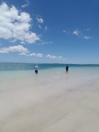 Hervey Bay, Australia: 20171214_115406_large.jpg
