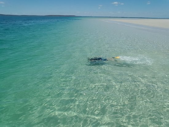 Hervey Bay, Australia: 20171214_114009_large.jpg