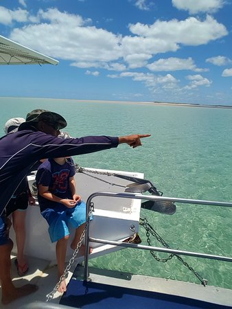 Hervey Bay, Australia: 20171214_113115_large.jpg