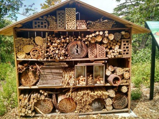 Wollongong, Australia: Insect hotel