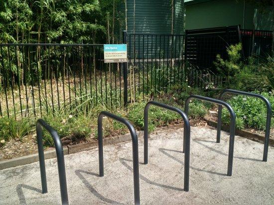 Wollongong, Australia: Well cared for regional botanical garden