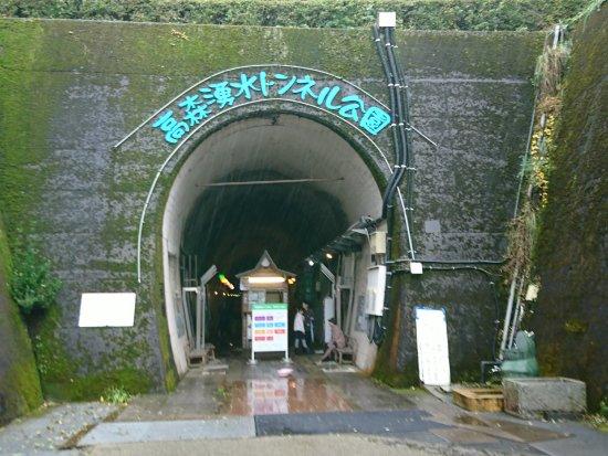 Takamori-machi, Japonya: 入口です。右から入って左の出口から出てきます。施設の説明は左側にあるので帰り際に説明を読む形になります。