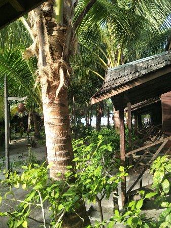 Semporna, Malásia: IMG20171211162019_large.jpg