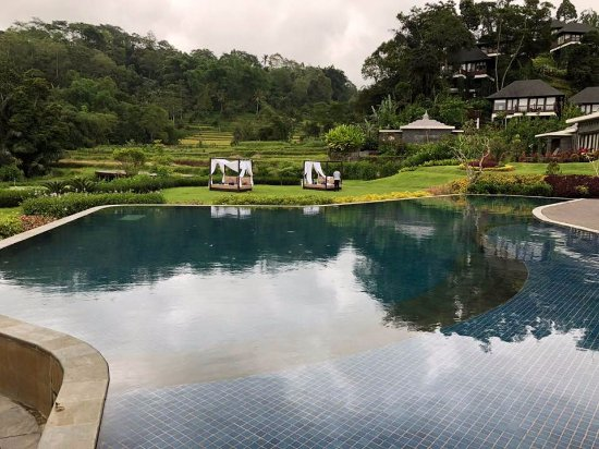 Baturiti, Indonesia: Amazing pool in the valley with rice fields and villas in the back ground