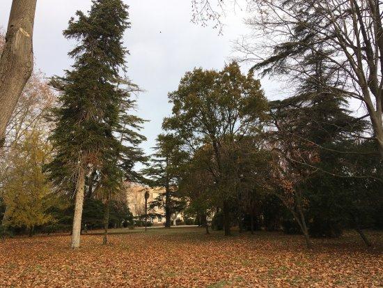 Lignan-sur-Orb, France: très belle promenade dans un parc de plus de 5 hectares