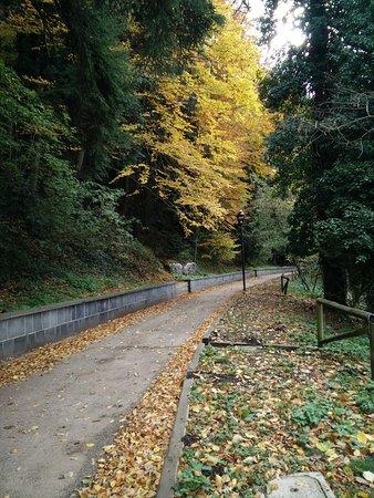 Monticchio Bagni, Italië: Sentiero
