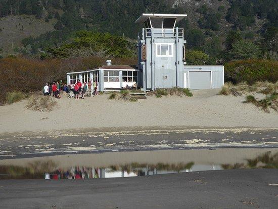 Stinson Beach照片