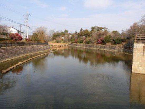 Yamatokoriyama, Japan: 鰻堀池