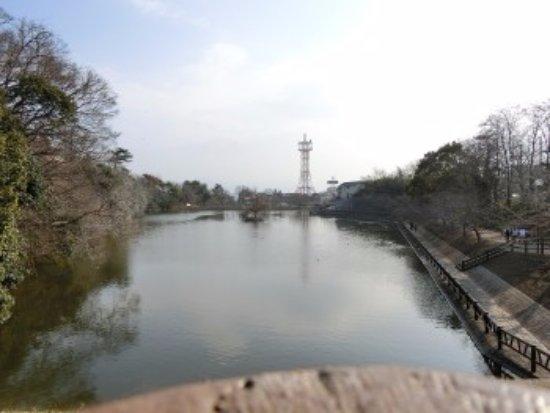 Yamatokoriyama, Japão: 鰻堀池