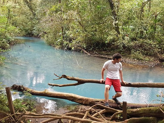 Tenorio Volcano National Park, كوستاريكا: dentro del parque
