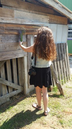 Greer, Caroline du Sud : Photo op!