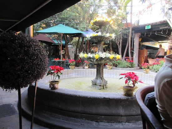 El Patio Tlaquepaque: view of garden