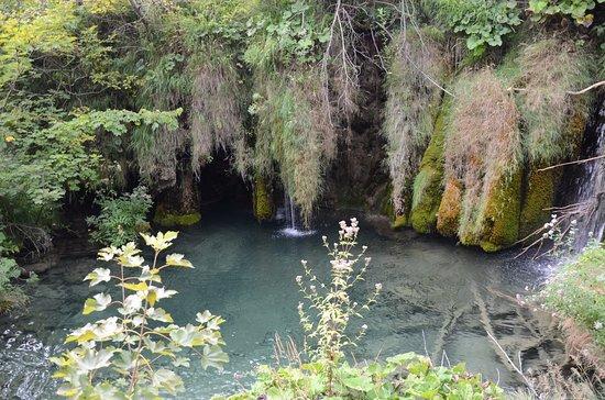 Plitvica, Hırvatistan: Kozjackie Wodospady
