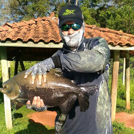Pesqueiro Vo Bina: Peixes do Vó Bina no fly fishing