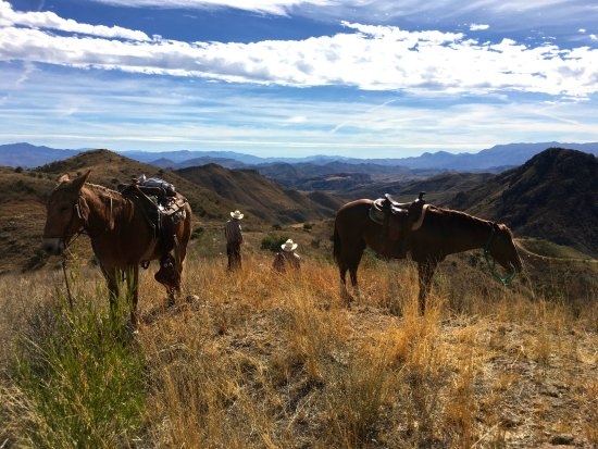 Sonora, Mexico: Taking a break on the trailride