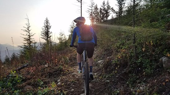 ‪Seattle Mountain Bike Tours‬