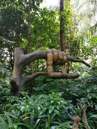 Chimelong Safari Park: Snake
