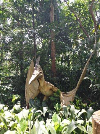 Chimelong Safari Park: Pterodactyl