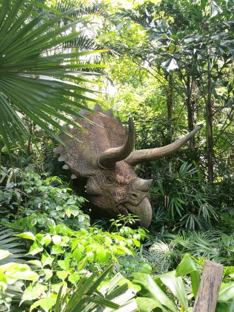 Chimelong Safari Park: Triceratops