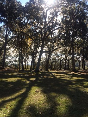 Fort Morris Historic Site: Love the sun peeking through the trees.