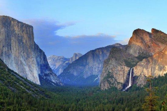 Gray Line San Francisco: Yosemite Day Tour