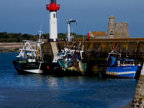 Saint-Vaast-la-Hougue, Francia: Vu du port deSt Vaast