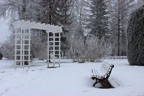 Rapina, Estonya: зима в парке