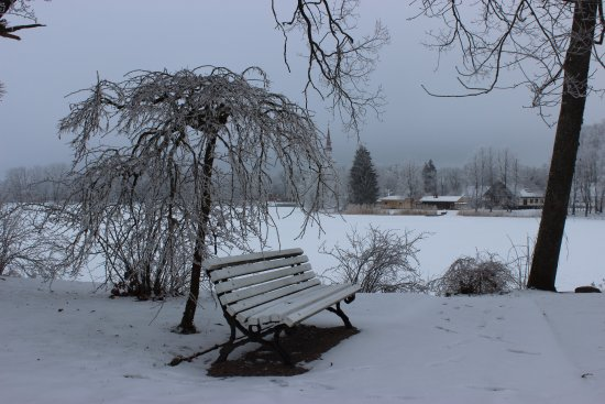 Rapina, Estonya: парк и озеро
