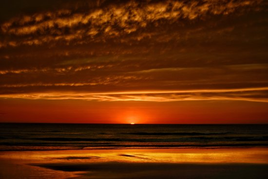 Playa Grande, Costa Rica: We love doing photography at home