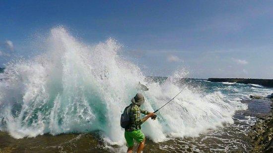 Kralendijk, Μπονέρ: Met Fishing Adventures Bonaire kun je ook onder begeleiding aan de noordoost kust van Bonaire vi
