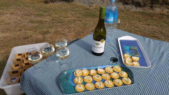 Unforgettable Skippers Canyon Tour : Water, Wine, Cheese and Cookies for Picnic Break