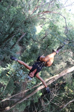 Extreme Zip Line Adventure: the only way to fly!