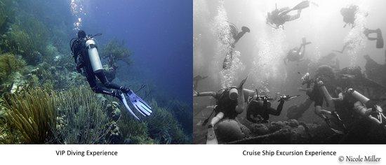 Kralendijk, Μπονέρ: VIP Divers vs Cruise ship excursion experience