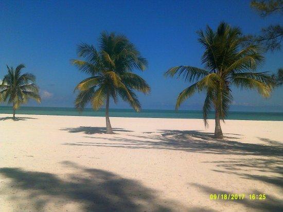 Isla Pasion Foto