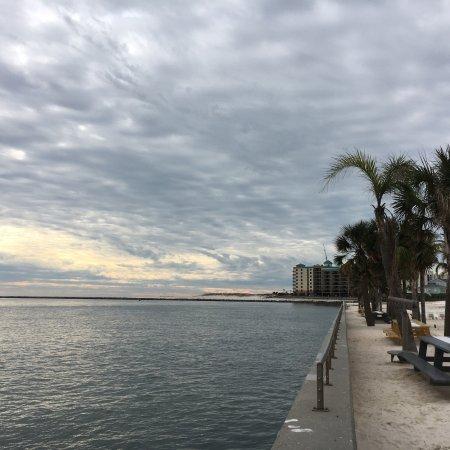 The Gulf: photo1.jpg